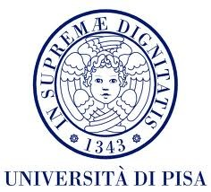 University of Pisa, Pisa (UNIPI)